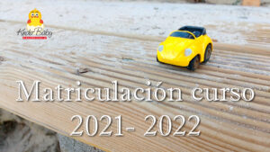Lee más sobre el artículo Matriculación curso 2021 – 2022